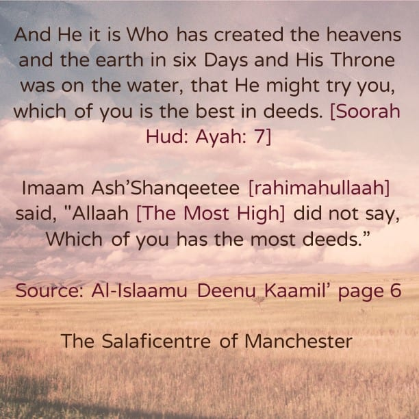 The Best or The Most-Imaam Shanqeetee