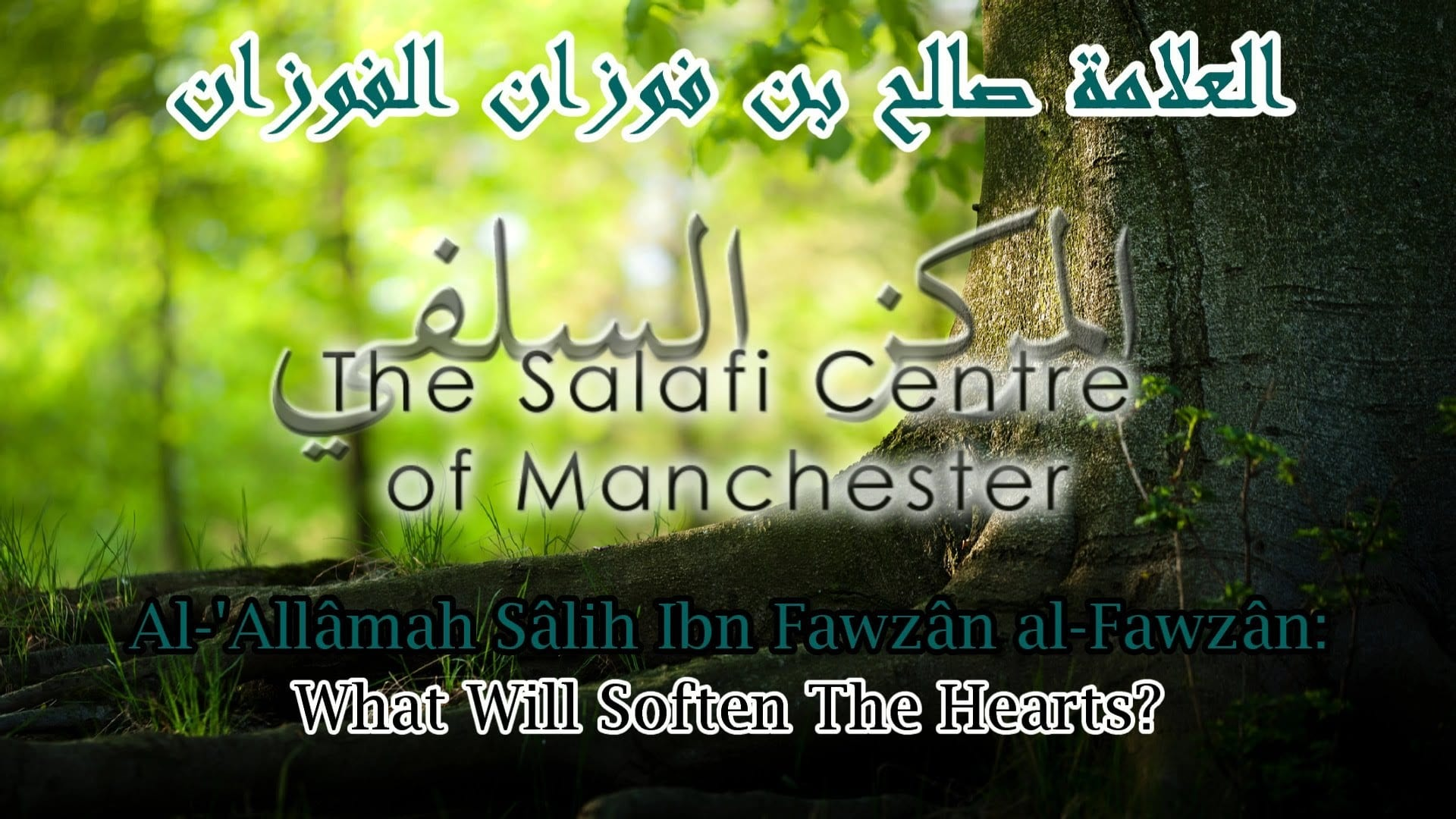 What Will Soften The Hearts? | Al-'Allâmah Sâlih al-Fawzân