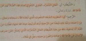 shaytaan2