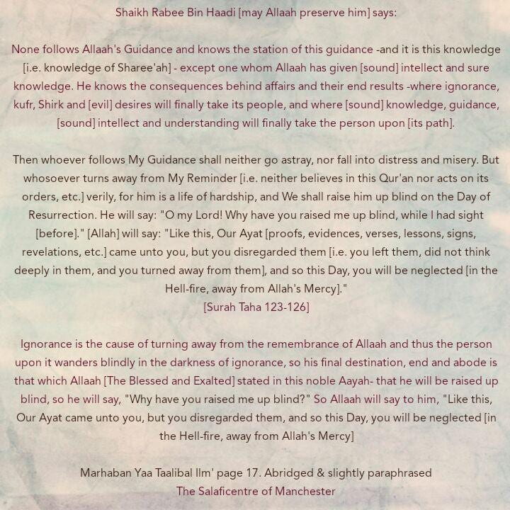 [2] Excerpts From Shaikh Rabee's Book Titled 'Marhaban Yaa Taalibal Ilm' -[One of The Devastating Consequences of Turning Away From Allaah's Guidance Due to Jahl]