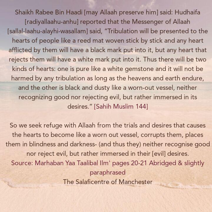 [3] Excerpts From Shaikh Rabee's Book Titled 'Marhaban Yaa Taalibal Ilm'