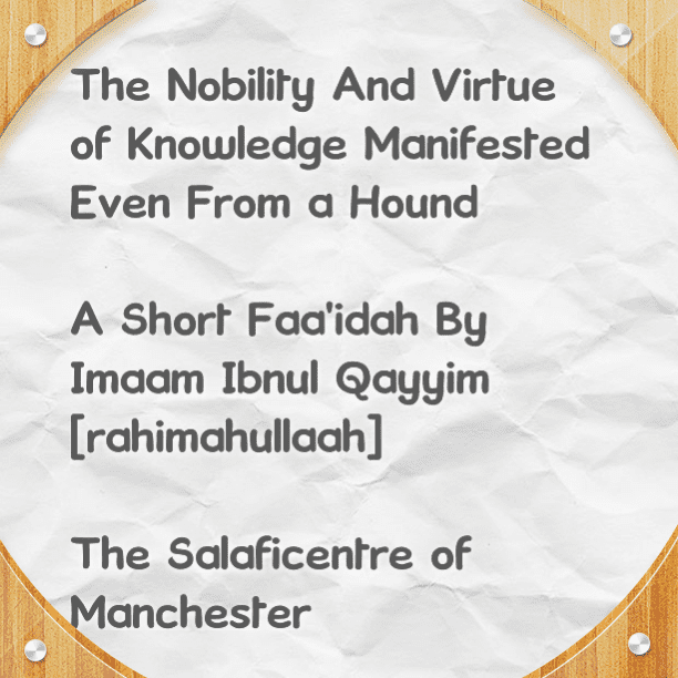 The Nobility and Virtue of Knowledge Manifested Even From a Hound