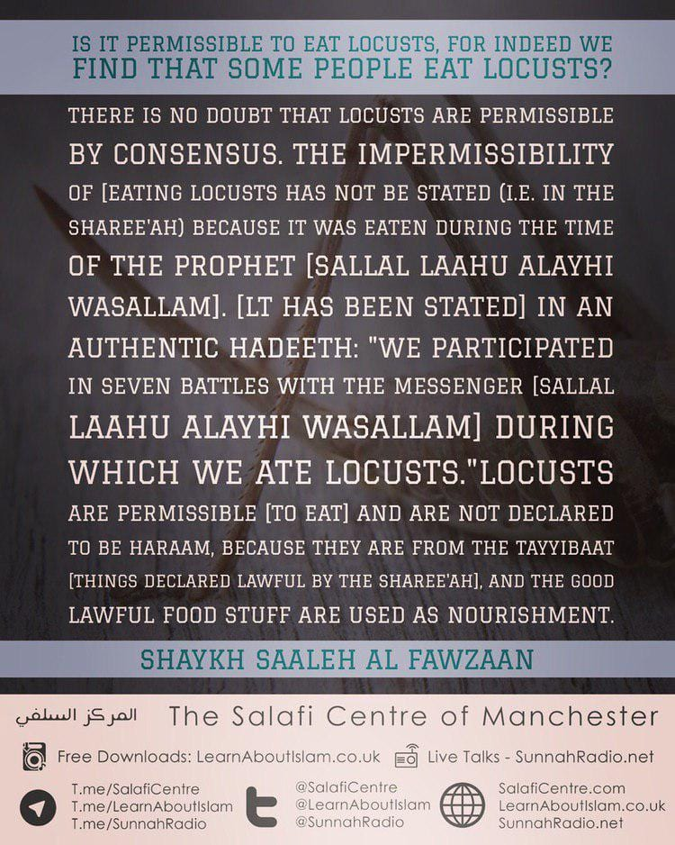 Is it permissible to eat locusts? Shaykh Saaleh Fawzaan